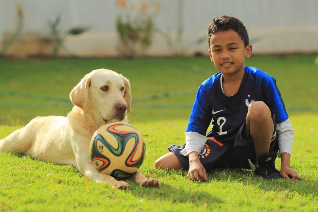 Labrador Retriever und Kinder Labrador und Kinder